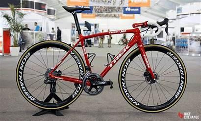 Bikes Bikeexchange Trek Worldtour Segafredo Uci Tour