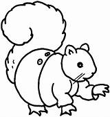 Squirrel Coloring Pages Cute Para Flying Colorear Clipart Animales Play Clipartpanda Cliparts Library sketch template