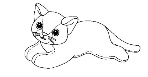 coloring activity pages cat beanie baby coloring page