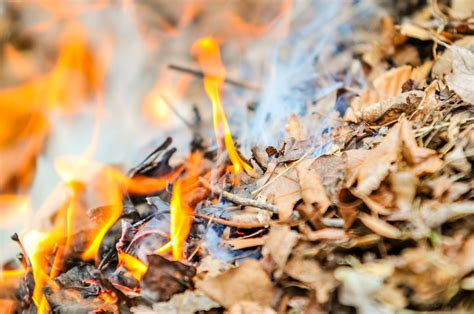 Burning Fire Free Stock Photo - Public Domain Pictures