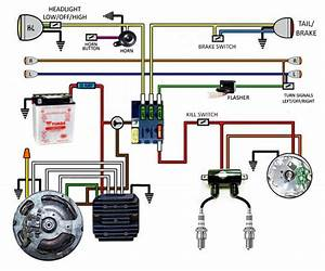 20 Elegant Kohler Voltage Regulator Wiring Diagram