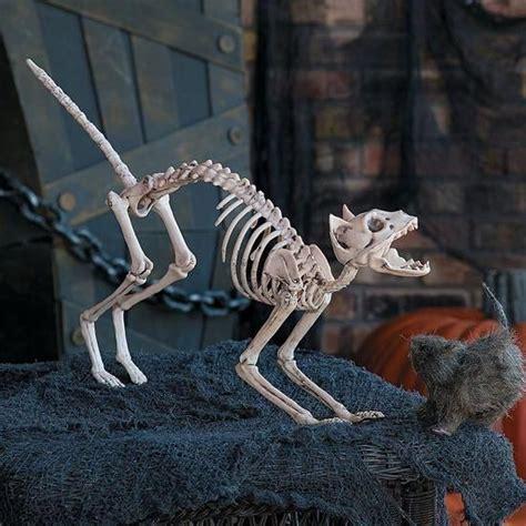 halloween skeleton cat halloween decor   halloween