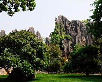 Yunnan 1024 1280 Khitan Wolf Forest Works
