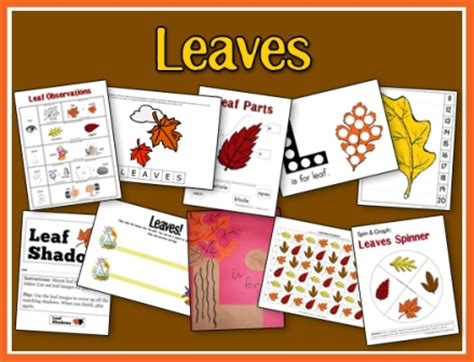 leaves preschool pack a teaching 322 | Leaves Unit