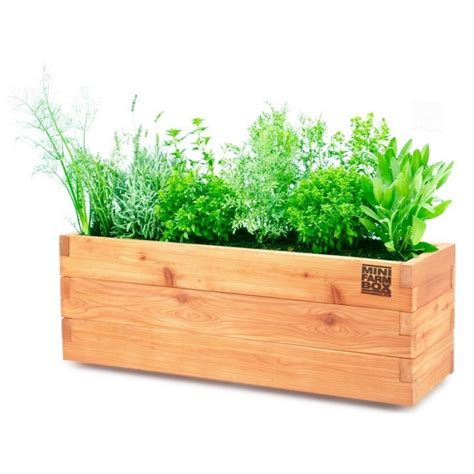 wooden plants incredible design of wood planter boxes for big plants homesfeed