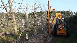 Taille De Cerisier : taille m canique du mur fruitier cerisier ctifl youtube ~ Melissatoandfro.com Idées de Décoration