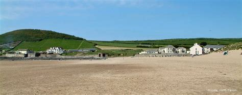 Holiday Cottages In South Devon Dog Friendly. Pet Friendly