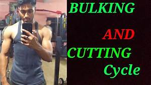 Importance Of Bulking And Cutting Cycle