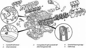 Belt Diagram Mercedes M113