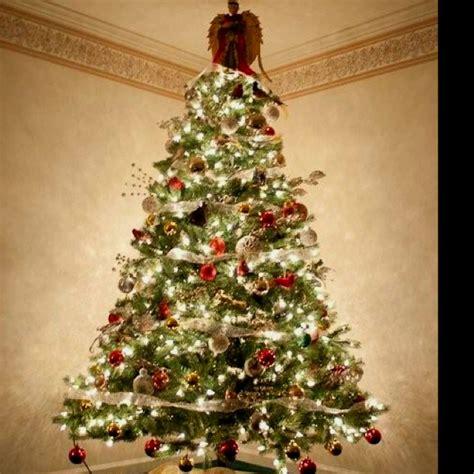 bird themed christmas tree for the home pinterest
