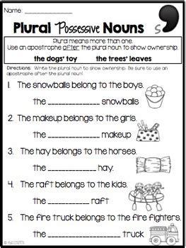 possessive nouns singular plural lesson plan