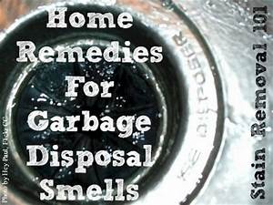 Garbage Disposal Chart Garbage Disposal Smells Home Remedies To Fix The Problem