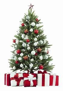 Weihnachtsbaum Rot Weiß : so geht s den wirklich perfekten weihnachtsbaum finden ~ Yasmunasinghe.com Haus und Dekorationen
