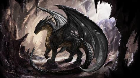 shadow dragon wallpaper  images