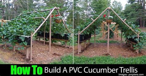 build  pvc cucumber trellis