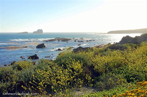 25 Things To Do In California Central Coast With Kids