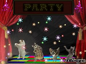 Cat Party! Picture #122859196 | Blingee.com