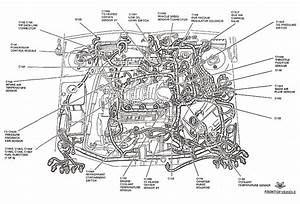 2004 Ford Focus Parts Diagram