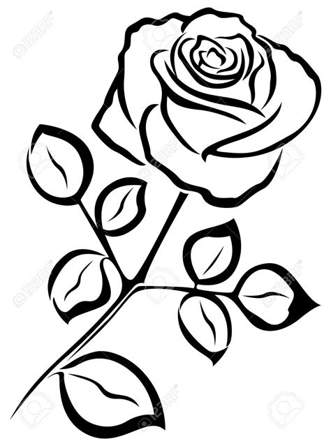 Roses In Black And White Drawing at GetDrawings | Free