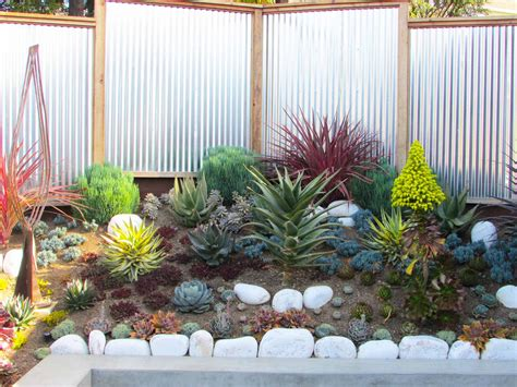 landscaping succulents inspirations find your best style of succulent landscaping for your garden design tenchicha com