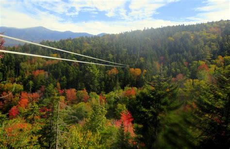 fall colors   bretton woods canopy