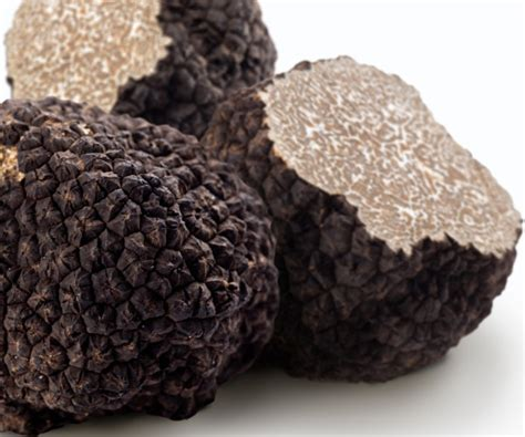 cuisiner les truffes choisir la truffe choisir conserver et cuisiner la