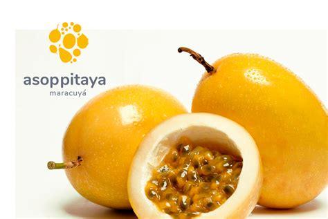 Passion Fruit (Maracuyá) - Asoppitaya