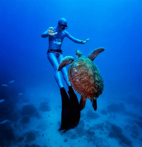How To Dive by How To Scuba Dive And Fish In The Islands