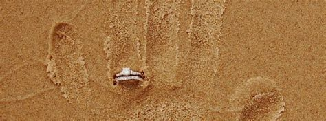 Demande En Mariage Originale Image De Demande En Mariage Nu33 Jornalagora