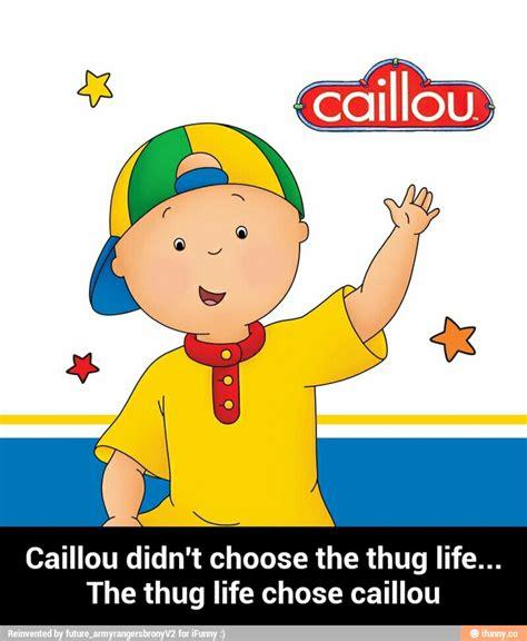 Caillou Memes - caillou meme related keywords caillou meme long tail keywords keywordsking