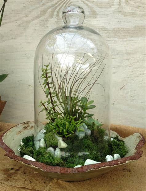 deko ideen kerzen im glas sukkulenten im glas im blickfang kreative deko ideen mit pflanzen