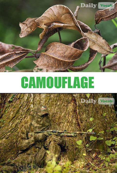 Camo Memes - camouflage meaning in hindi with picture dictionary