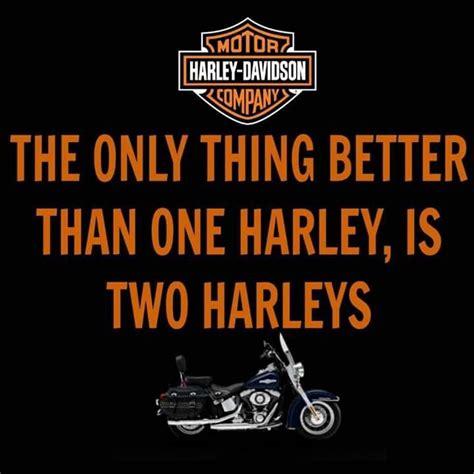 Harley Davidson Meme - 1093 best images about harley memes toons biker sayings on pinterest biker babes harley