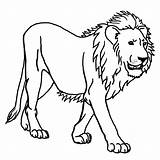 Lion Coloring Simple Pages Children Animals sketch template