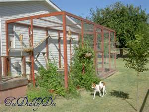 cat outdoor enclosure images