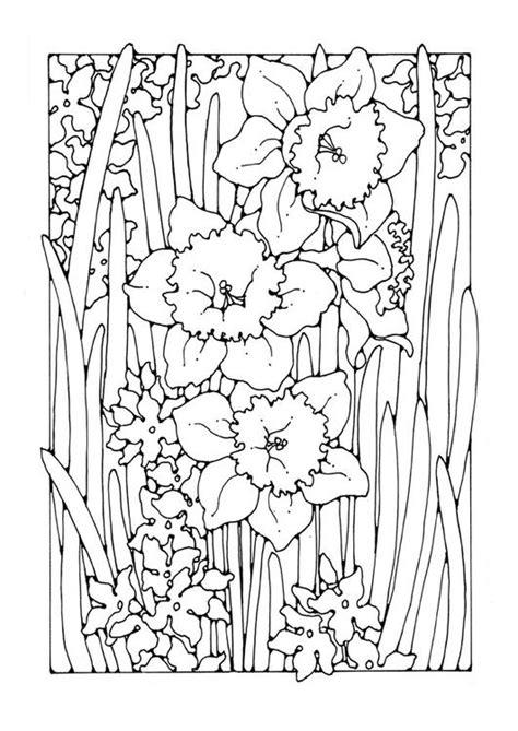 Kleurplaat Narcis by Kleurplaat Narcis Afb 27783