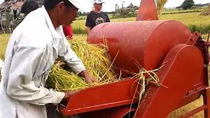 Champion In Rice Threshing Contest  U0026quot Fastbelt Rice Thresher