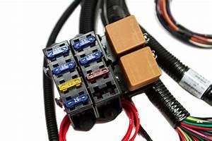 U0026 39 97   4l60e Standalone Wiring Harness  Dbc