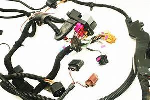 Engine Bay Ecu Wiring Harness 2 0 Azg 2001 Vw Jetta Mk4