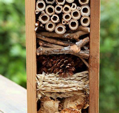 insektenhotel selber bauen ausfuehrliche bauanleitung fuer