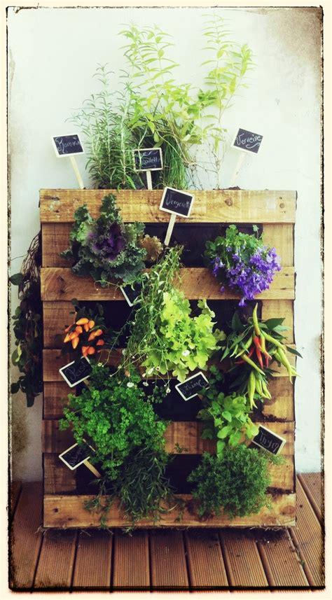 mur vegetal realise avec une palette en bois herbes