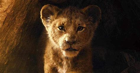 lion king remake    highest grossing film  cnet