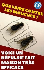 Comment Chasser Les Mouches : que faire contre les mouches voici un r pulsif fait ~ Melissatoandfro.com Idées de Décoration