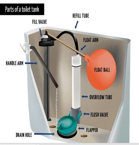 Parts Of A Water Closet by Toilet Plumbing By Ben Franklin Arizona Benjamin