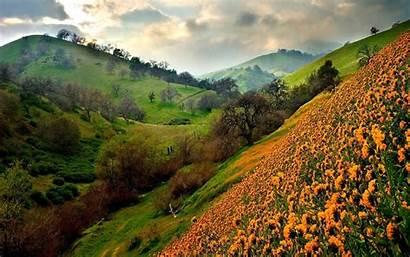 Windows Wallpapers Valley Flowers Desktop Downloads Source
