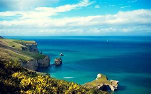 Daily Wallpaper: Shores of New Zealand