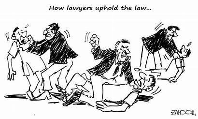 Cartoon Newspaper June Dawn Zahoor