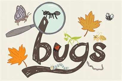 Bugs Clipart Clip Bug Graphics Airplanes Pancakes
