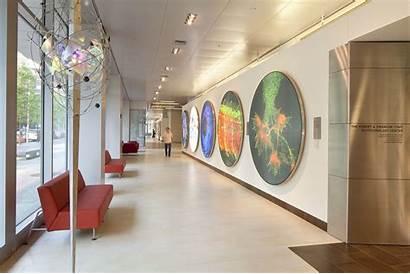 Koch Cancer Institute Pentagram Research Environmental Integrative