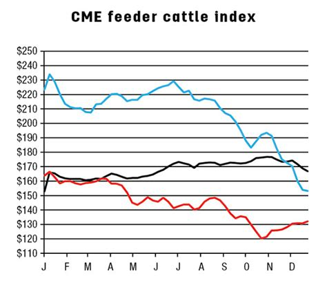 cme feeder cattle lower october placements to beef production increases